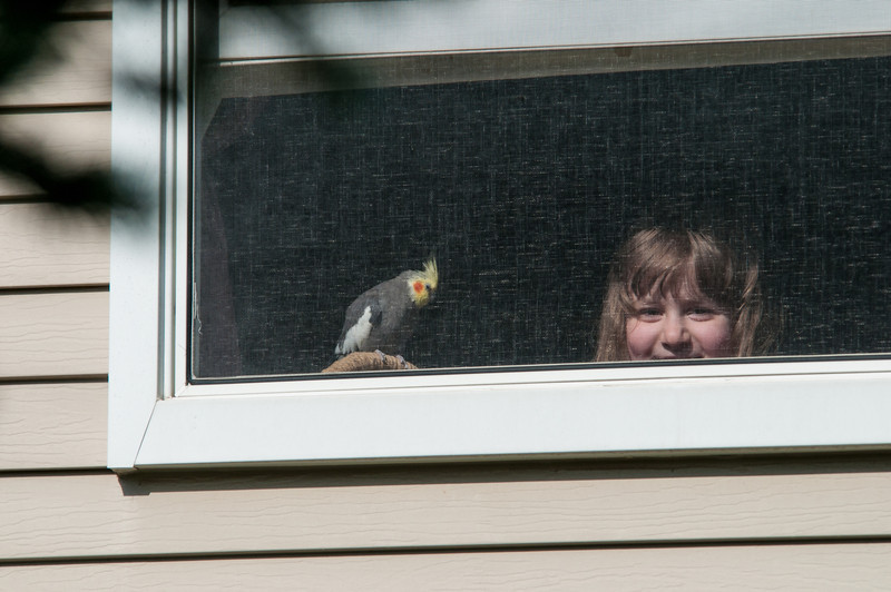 Our neighbor's bird and Devany.