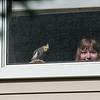 Our neighbor's bird and Devany.