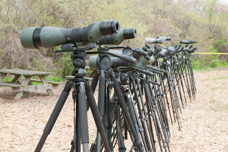 Spotting Scopes outside the vendors' tent know as Optics Alley, Biggest Week in Birding, Magee Marsh, NW Ohio, 2016