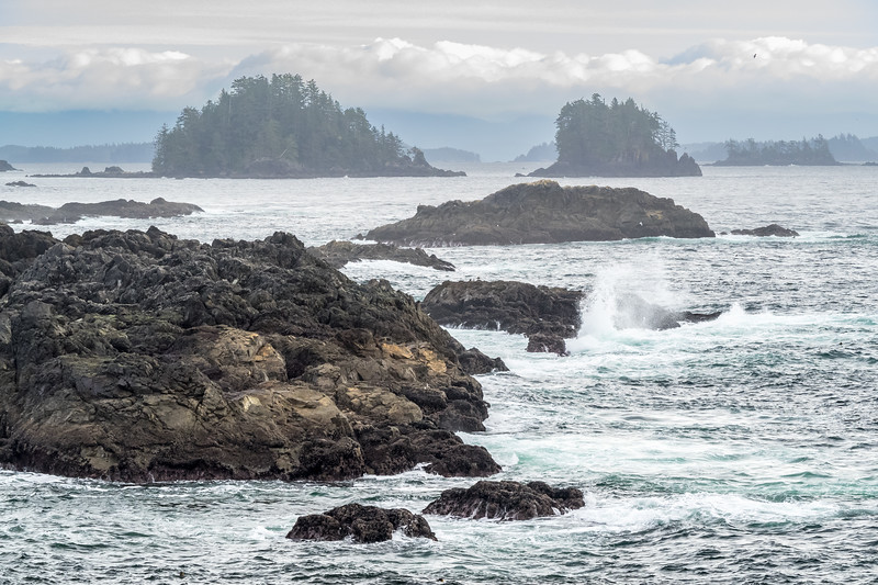 The rugged west coast of Vancouver Island certainly appealed to both of us.