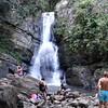 Puerto Rico El Yunque Forest  01