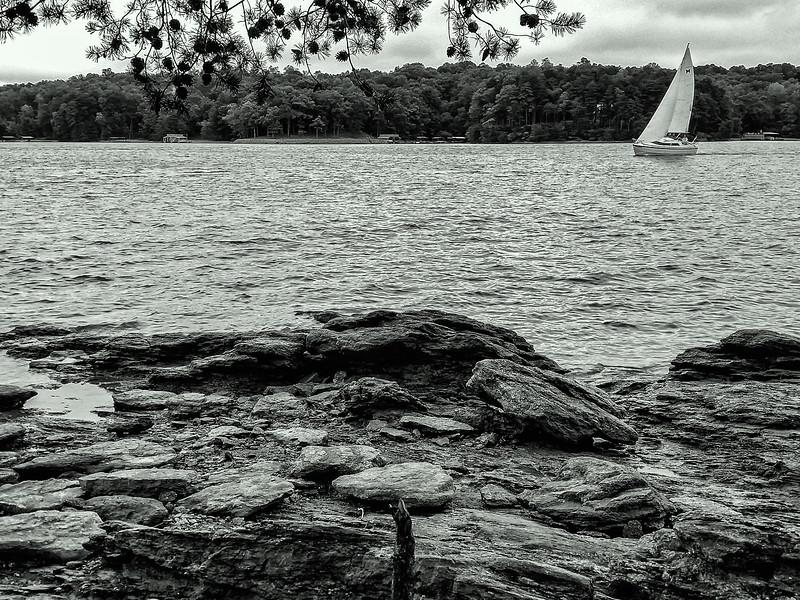Lake Lanier Sailboat - B&W