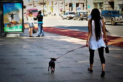 Дамма с собачкой.