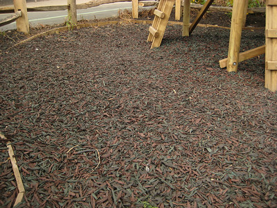 Mulch - the 7th food group.