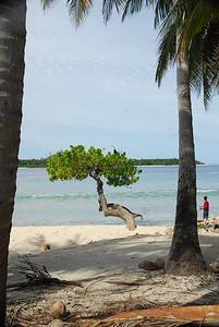 MALDIVES 330.jpg
