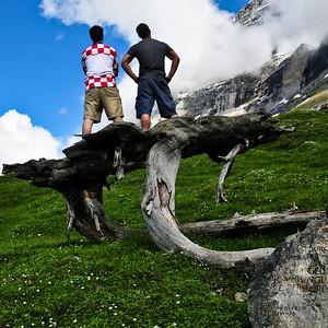 mountainHike-Tree-7