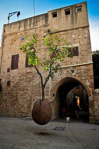 Афигительное дерево растущее в яйце. Кащей Бессмертный вспоминается - может он как-то связан?