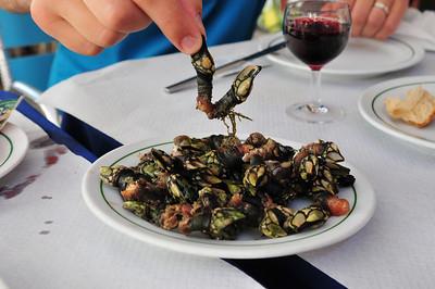 Местный, Лисабонский, деликатес. Забыл как называются - эдакие молюски которые растут под водой на мостах и набережных.