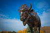 North Campus Fall Exteriors with the Bronze Buffalo Outside the Center for the Arts, CFA<br /> <br /> Photographer: Douglas Levere