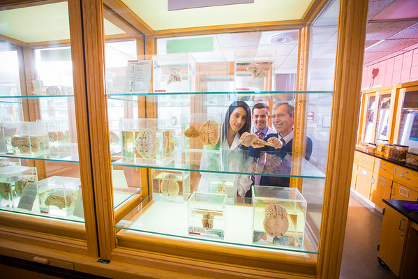 Medical Students in the South Campus Neuroanatomy Museum with Dr. Chris Cohan<br /> <br /> Photographer: Douglas Levere