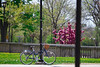 Students and buildings on South Campus in the spring <br /> <br /> Photographer: Douglas Levere