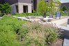 Photos of Grace Plaza in the spring<br /> <br /> Photographer: Nancy Parisi
