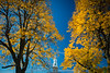 Hayes Hall in the Fall<br /> <br /> Photograph: Douglas Levere