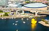 World's Largest Rubber Duck at Canalside in downtown Buffalo<br /> <br /> Photographer: Chad Cooper
