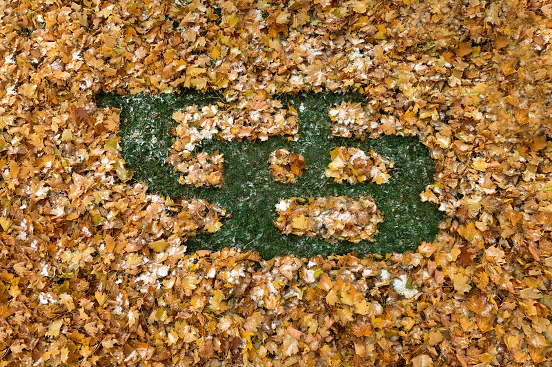 Photo illustration of the UB logo made out of fall leaves with a touch of snow.