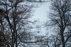South Campus in the winter with snow.<br /> <br /> Photographer: Douglas Levere
