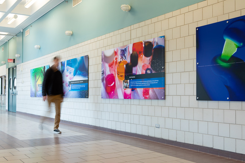 UB-branded signage in the Natural Sciences Complex, a collaboration with the College of Arts and Sciences and the Department of Chemistry.<br /> <br /> Photographer: Douglas Levere