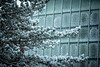 Snow collects on the windows of the Alfiero Center in December 2019 on North Campus.<br /> <br /> Photographer: Douglas Levere