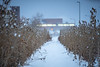 Snow in the Solar Strand in December 2019 on North Campus.<br /> <br /> Photographer: Douglas Levere