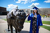 Students come to North Campus on May 16, 2020 to take photos in celebration of their graduations from various programs. The ceremonies were all held virtually because of the COVID-19 response. Carlye Albrecht, who studied media study poses for a photo with the Bronze Buffalo. <br /> <br /> Photographer: Meredith Forrest Kulwicki