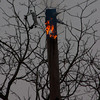 11-10-2011, Utility Pole, Pittsgrove Twp  Olivet Rd  and Husted Station Rd  (C) Edan Davis, sjfirenews com (3)