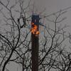 11-10-2011, Utility Pole, Pittsgrove Twp  Olivet Rd  and Husted Station Rd  (C) Edan Davis, sjfirenews com (1)