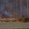11-19-2011, Brush, Upper Pittsgrove Twp, Monroeville, 370 Monroeville Rd  (C) Edan Davis, sjfirenews com (2)