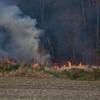 11-19-2011, Brush, Upper Pittsgrove Twp, Monroeville, 370 Monroeville Rd  (C) Edan Davis, sjfirenews com (7)