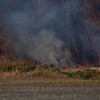 11-19-2011, Brush, Upper Pittsgrove Twp, Monroeville, 370 Monroeville Rd  (C) Edan Davis, sjfirenews com (1)