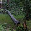 06-29-2012, Storm Damage, Southern NJ, (C) Edan Davis, www sjfirenews com (19)
