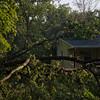 06-29-2012, Storm Damage, Southern NJ, (C) Edan Davis, www sjfirenews com (16)