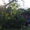 06-29-2012, Storm Damage, Southern NJ, (C) Edan Davis, www sjfirenews com (12)