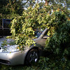06-29-2012, Storm Damage, Southern NJ, (C) Edan Davis, www sjfirenews com (11)