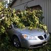 06-29-2012, Storm Damage, Southern NJ, (C) Edan Davis, www sjfirenews com (10)