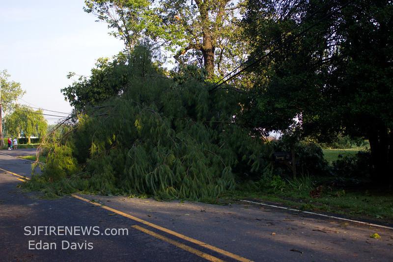 06-29-2012, Storm Damage, Southern NJ, (C) Edan Davis, www sjfirenews com