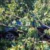 06-29-2012, Storm Damage, Southern NJ, (C) Edan Davis, www sjfirenews com (9)