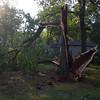 06-29-2012, Storm Damage, Southern NJ, (C) Edan Davis, www sjfirenews com (17)
