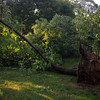 06-29-2012, Storm Damage, Southern NJ, (C) Edan Davis, www sjfirenews com (2)