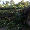 06-29-2012, Storm Damage, Southern NJ, (C) Edan Davis, www sjfirenews com (3)