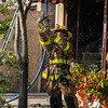 07-29-2015, 4 Alarm Commercial Structure, 19 N  High St  Millville, (C) Edan Davis, www sjfirenews (46)