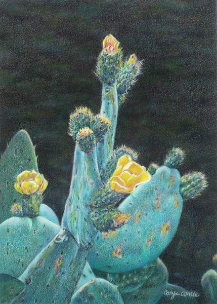 """Prickly Pears"" (colored pencils and pan pastels) by Caryn Coville"