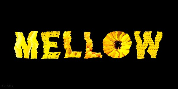 """Mellow Yellow"" (digital) by Bryan Fielding"
