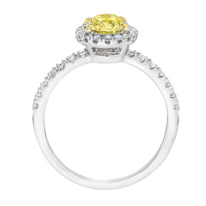 01756_Jewelry_Stock_Photography
