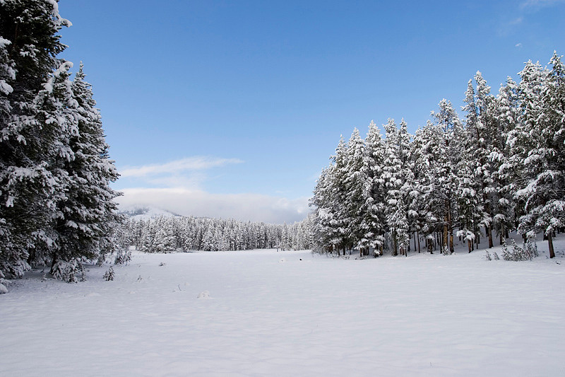 Snow-covered meadow where I lived.