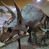 Dinosaur Center, Thermopolis, WY.
