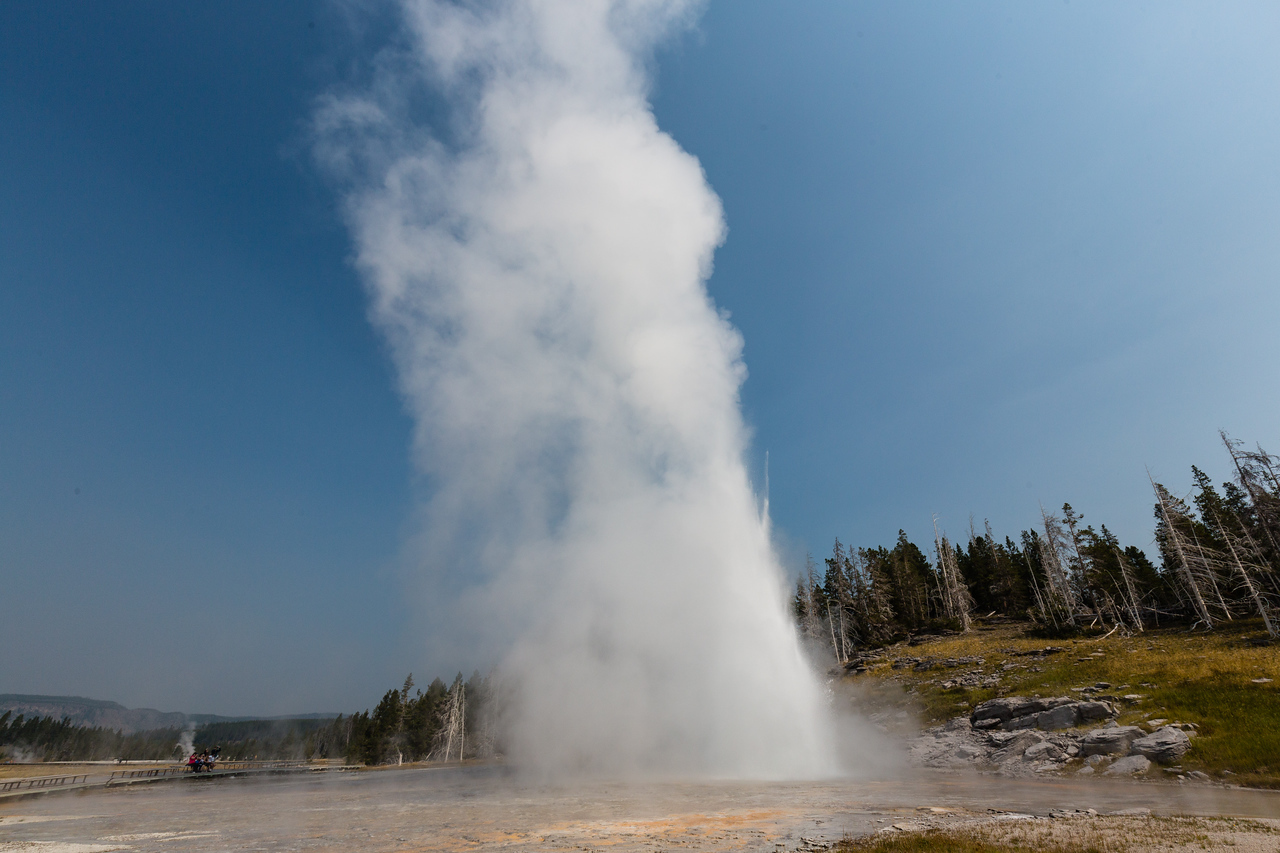 IMAGE: https://photos.smugmug.com/Yellowstone-2015/i-kJjsmKZ/0/X2/451A3432-X2.jpg