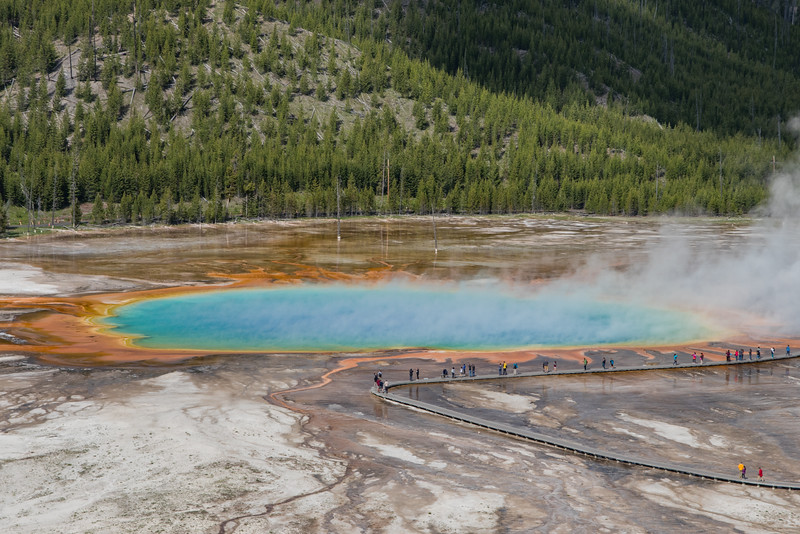 IMAGE: https://photos.smugmug.com/Yellowstone-2016/i-T6rHHnm/0/L/z%20ys%2025-506-L.jpg