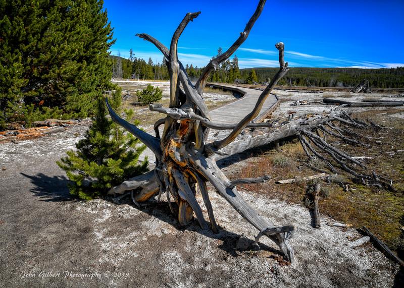 Mystic Falls Trail #3
