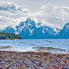 Grand Tetons Shoreline