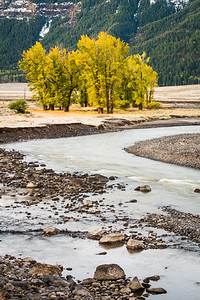 Fall in the Lamar Valley